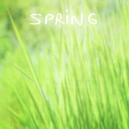 Green grass background with text space, grunge style photo, fine art, soft focus, beautiful fresh field, sunny day, fresh spring nature concept   photo