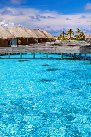 maldives island: Luxury resort in Maldives, little wooden bungalows over blue transparent water, spending summer vacation on Indian ocean