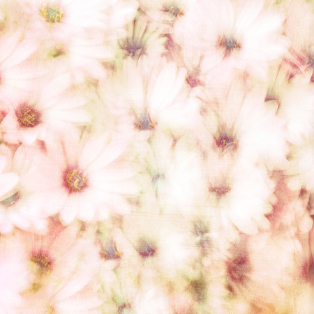 Beautiful floral background, abstract natural texture, gentle daisy flowers, fine art, blooming nature, tender flowery wallpaper  photo