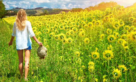 Happy young woman walking in fresh sunflowers field, agricultural landscape, autumnal nature, harvest season concept