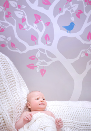 babyroom: Newborn girl in cute baby room