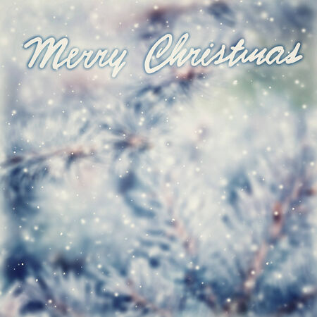 hoar: Vintage Christmas greeting card background, beautiful vintage abstract background with text space, coniferous tree branch covered with hoar frost, selective focus on the text