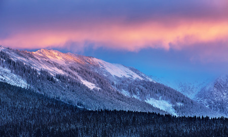 Amazing winter landscape, beautiful high Alpine mountains covered with pine forest and white snow, wintertime beauty of nature, beautiful sunset light photo