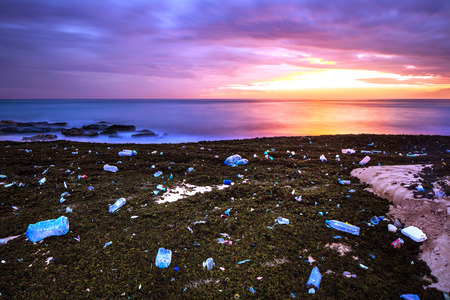environmental damage: Pile of garbage on the beach on beautiful purple sunset background, earth pollution, ecological disaster and environmental damage, ugliness and beauty in one picture