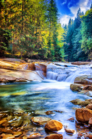 Beautiful waterfall in the forest, amazing fast water stream between stones, wonderful landscape, beauty of wild Ukrainian nature Imagens