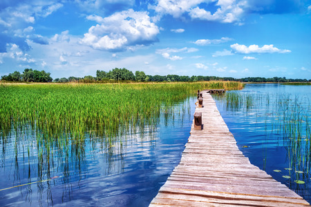 walkway: Beautiful nature landscape, beauty of countryside places, old wooden bridge across pond, perfect place for summer vacation