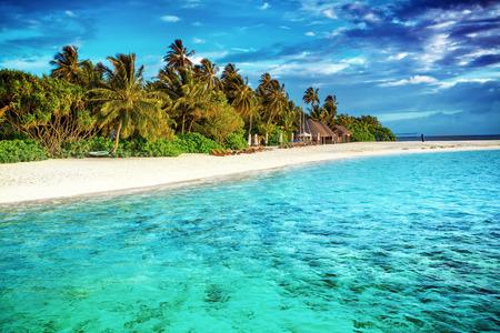 아름다운 낙원 비치, 고급 열대 리조트, 해안에 신선한 녹색 야자수와 섬 주변 청록색 투명한 바다, 몰디브, 아시아의 여름 휴가 (방학)