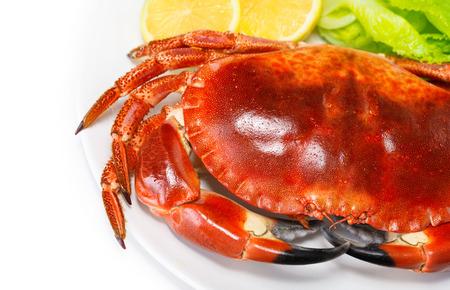 cangrejo: Sabroso cangrejo hervida roja con ensalada fresca de lechuga y lim�n aislados en fondo blanco, deliciosos mariscos, men� del restaurante de lujo