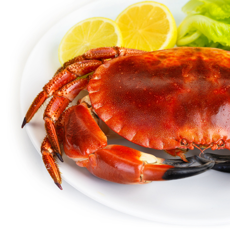 Red tasty boiled crab with fresh green lettuce salad and lemon isolated on white background, beautiful food still life, healthy restaurant dish