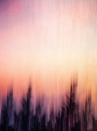 trees silhouette: Abstract artistic background, creative cinematic photo of dark forest over sunset, mysterious scary picture