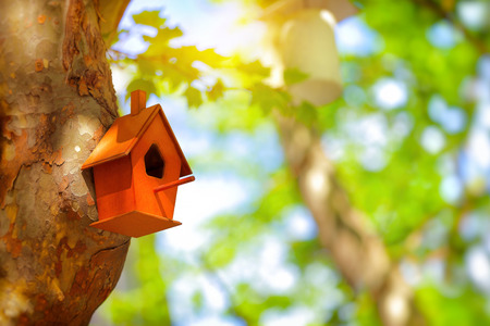 Closeup photo of a cute little nesting box on a tree trunk in a park, handmade house for birds, fauna protection, lets help nature together, save Planet Earth