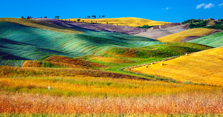 Beautiful agricultural landscape, amazing view on the colorful hills, production of wheat, barley and other crop, harvest season, wonderful autumn nature of Tuscany, Italy, Europe
