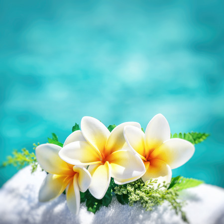Frangipani flowers border over blue water background, spa still life, travel and tourism, conceptual photo of a summer vacation with copy space Banco de Imagens