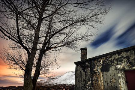 Night winter landscape, old abandoned house near big dry tree, sadness and loneliness concept