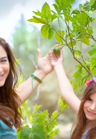 Mother with daughter in the orchard, enjoy the appearance of the first fruits, holding in hands lime fruit, young gardeners with pleasure spending time in the garden, happy life in countryside