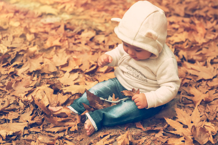 Cute little baby boy having fun in the autumn park, adorable child with pleasure sitting on the ground covered with dry tree leaves, enjoying autumn season Stock Photo
