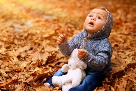 Little boy sitting on the ground covered with dry leaves in the park, with wonder looking up to the sun, playing with his soft toy outdoors, enjoying warm autumn weather 写真素材