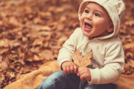 Portrait of a happy excited little boy having fun in the park, cheerful child sitting on the blanket on the ground covered with dry tree leaves, enjoying autumn holidays 写真素材