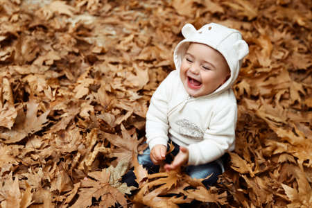 Portrait of a little baby boy laughing, sitting on the ground covered with dry tree leaves in the forest, enjoying autumn nature Banque d'images