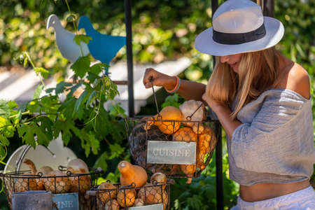 Happy Healthy Woman with Pleasure Spending Summer day at Outdoor Farm Market. Choosing Fresh Ripe Organic Fruits and Vegetables. Vegetarian Nutrition. Healthy Lifestyle. Banque d'images
