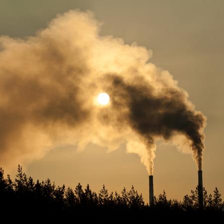 Industrial smoke from chimnye on evening sky photo