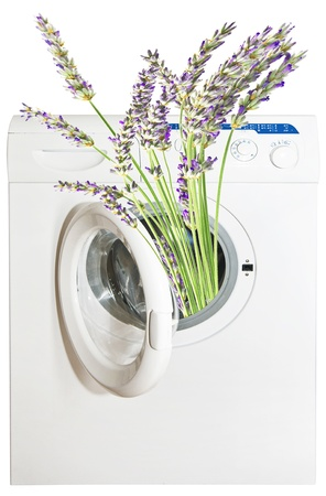 perfumed lavender in the washing machine photo