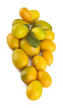 cumquat: Cumquat or kumquat isolated on white background