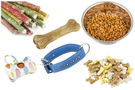 collage of items for dogs on the white photo