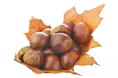chestnut: Chestnuts fresh fruit close up  Stock Photo