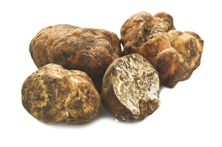 truffles: Truffles close up on the white