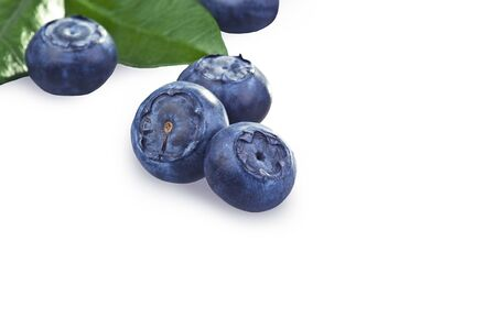 foglia: blueberries close up on a white background