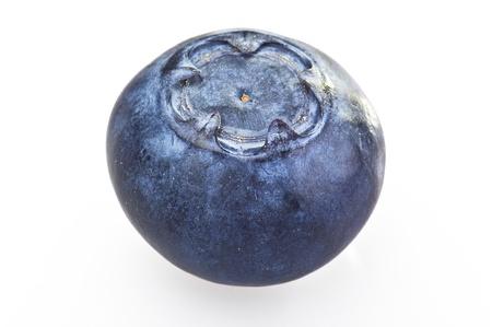 foglia: blueberry close up on a white background