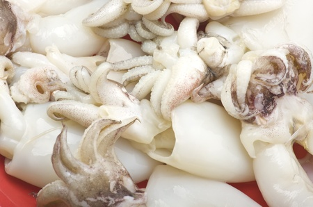 broil: Fresh cuttlefish on the red plate Stock Photo