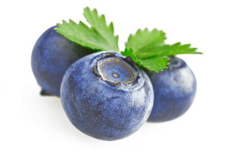 fresh bluebarry close up on white background