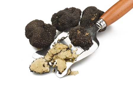 freshly harvested truffles  and sliced close up  Stock Photo