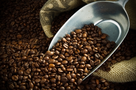fairtrade: sack full of fresh coffee beans with a metal scoop Stock Photo