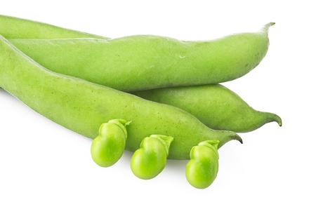 fave bean: Fresh broad beans and pods close up on white