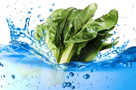 Chard splash in the water over white background Stock Photo - 21263788