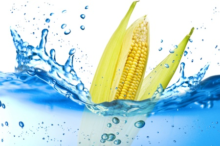 Corn splash in the water over white background Stock Photo - 21263807