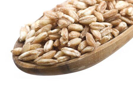 spelt: Spoon of Raw Organic Spelt Grain close up on the white