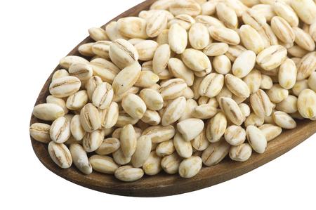 germinación: Cuchara de cebada perla de cerca en el blanco