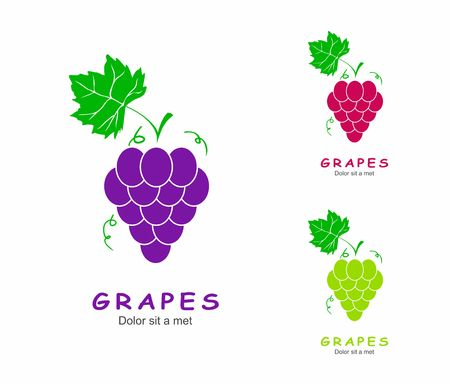 grapes wine: Grapes with green leaf isolated Icons. Illustration