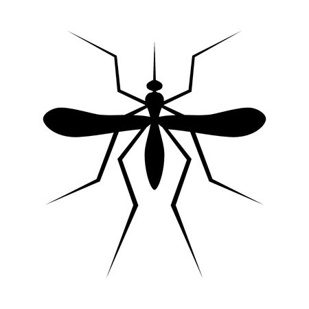 Silhouette of Mosquito. Insect, Culex pipiens isolated on white background. Vector Illustration.