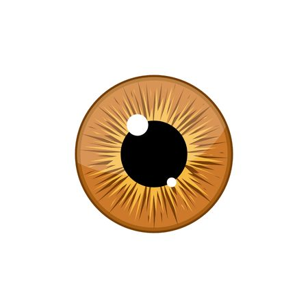 Human light brown eyeball iris pupil isolated on white background. Eye Vector Illustration