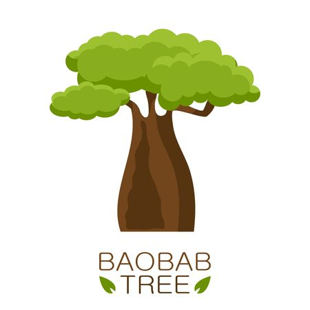 African Baobab tree icon with text isolated on white background. Vector illustration Illustration