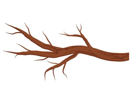 A brown bare tree branch without leaves isolated on white background. Vector Illustration