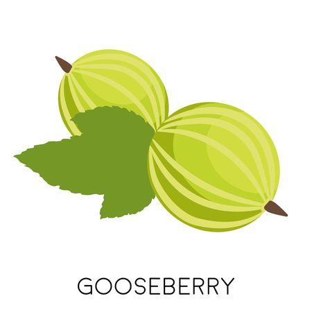 Flache Ikone der grünen Stachelbeerebeere lokalisiert auf weißem Hintergrund. Öko leckeres Sommeressen. Obst Vektor-Illustration Vektorgrafik
