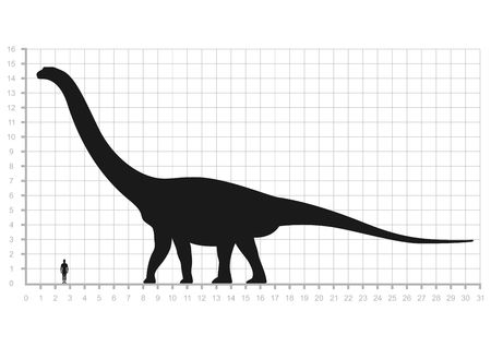 Comparison of human and dinosaur sizes measuring scale isolated on white background. Argentinosaurus or Brachiosaurus silhouette black. Vector illustration