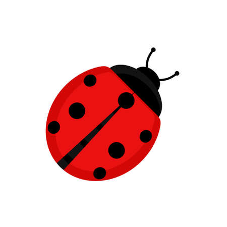 Cute red ladybug beetle insect in flat style on isolated on white background. Vector illustration