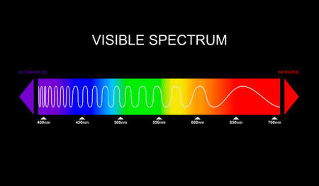 Spectrum, visible light diagram. Portion of the electromagnetic spectrum that is visible to the human eye. Color electromagnetic spectrum, light wave frequency. Infrared and ultraviolet. Vector 版權商用圖片 - 158209107